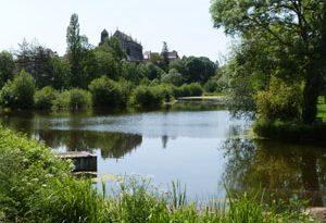 L'étang au-delà de l'eau